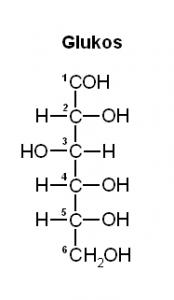 glukos1